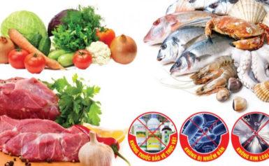 Thực phẩm nhập khẩu và những ưu điểm bạn không nên bỏ qua