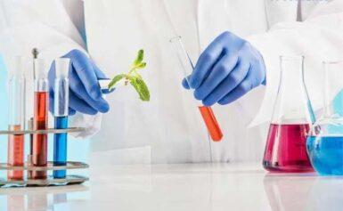 Những ưu điểm chiết xuất dược liệu mang lại cho doanh nghiệp