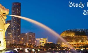 Tại sao nên chọn dịch vụ du học singapore tại Tổ chức giáo dục Netviet